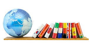 Services: shelf with globe and language dictionaries